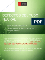 Clase 1. Defectos Del TN