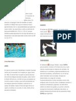 Deportes Con Descripcion e Imagenes