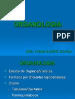1. Organología