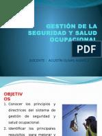 Gestión de La Seguridad y Salud Ocupacional Concordancias DS 005-2009.TR