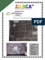 ACASCA 10.pdf