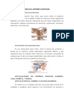 ARTICULACIONES DEL MIEMBRO SUPERIOR.docx