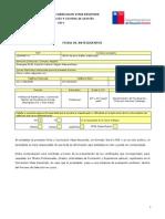 Ficha Antecedentes y CV Resumido Planif y Control Gestion