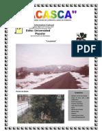 ACASCA 16.pdf