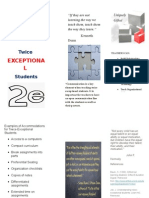 twice exceptional brochure