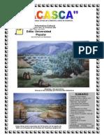 ACASCA 18.pdf
