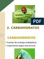 2 Carbohidratos .pptx