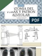 Anatomia Del Torax y Patron Alveolar 1