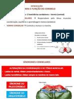 ANATOMIA E FUNÇÃO DO CEREBELO