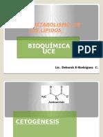 Cuerpos Cetonicos Para Bioquimica Clinica