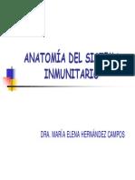 Anatomia Del Sistema Inmunitario