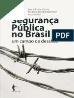 Seguranca publica no brasil.pdf