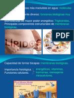 Bioquimica-Lípidos