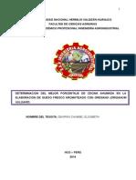 tesis informe 1