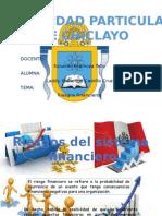 Riesgos Del Sistema Financiero - Laddy Castillo