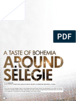 A taste of Bohemia - Around Selegie