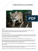 Eastern Mountain Lions May Be Extinct but Locals Still See Them