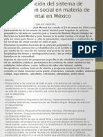 Identificación Del Sistema de Protección Social en Materia
