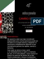 Cambio de piel, Arte participativo, Andrea Granados, 2010