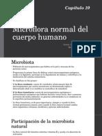 Microflora Normal Del Cuerpo Humano