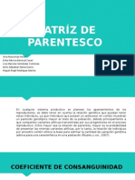 Matriz de Parentesco