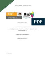 DPE_U2_EA_ALCU-1.docx