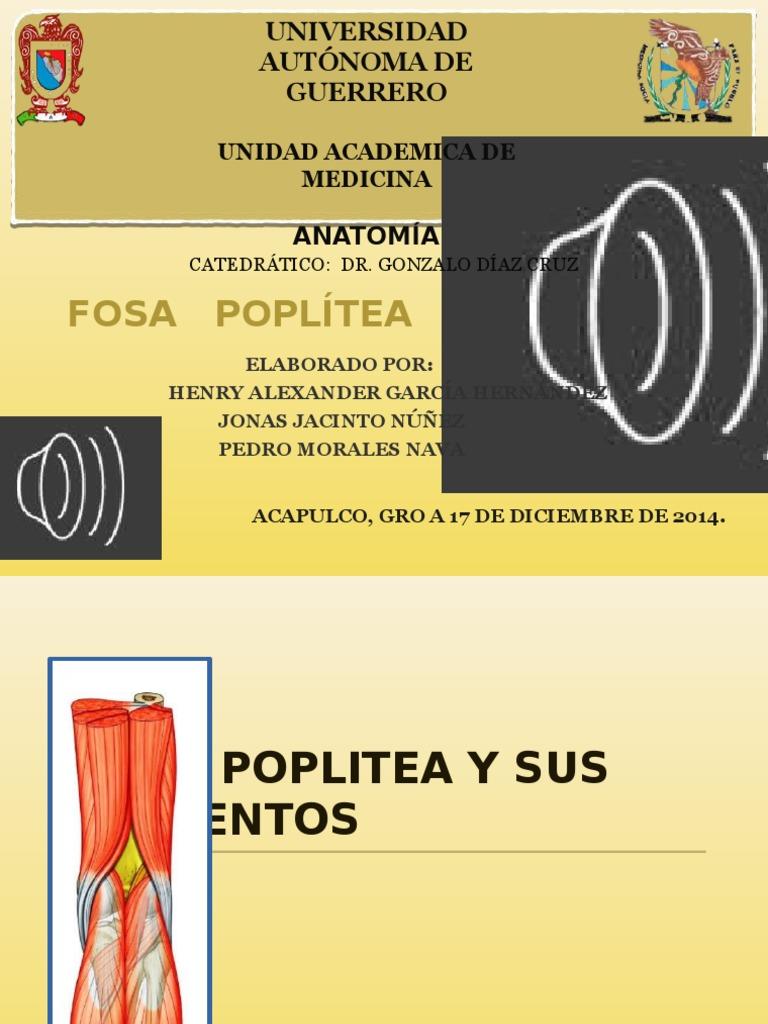 Anatomia-fosa Poplitea