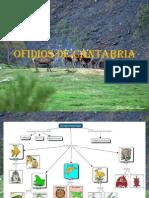 0fidios de Cantabria