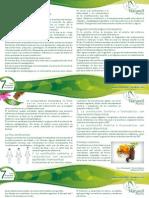 Boletin Pagina Naturell 7