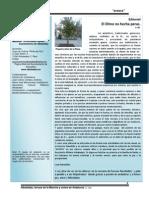 ACASCA 2014 diciembre.pdf