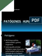 Patgenos_humanos