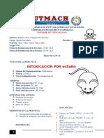 Inform 12 Intoxicacion Por Estaño