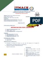 Informe 9 Intoxicacion Por Cadmio