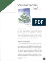 Calendario de Arbustos Florales 1999
