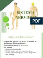 Sistema Nervioso3
