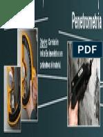 tecnicas_esclerometricas