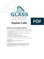 Glass Horse Equine Colic