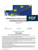 INTERIM REPORT OF THE SME ´LOW´ LEVEL GROUP