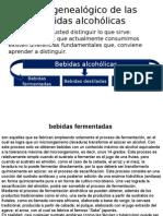 Arbol Genealogico de Los Vinos y Licores