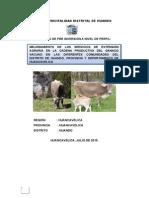 ESTUDIO DE PRE INVERSIÓN A NIVEL DE PERFIL clau - manuel.docx