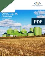 WEC - Biofuels 2010