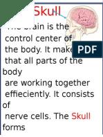 Bones That Protect
