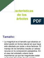Características de Los Árboles