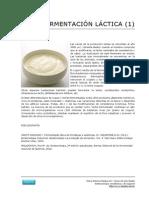 Fermentacion Lactica Yogurt