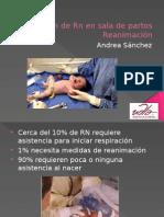 Atención de Rn en sala de partos