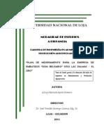 Tesis-plan Ce Mejoramiento Para La Empresa de Embutidos Don Belisariositio Las Palmas-Oro