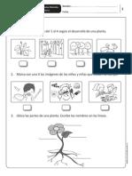 eva_cnat_1basico.pdf