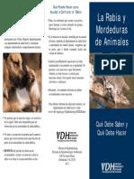 Rabies Brochure - Spanish