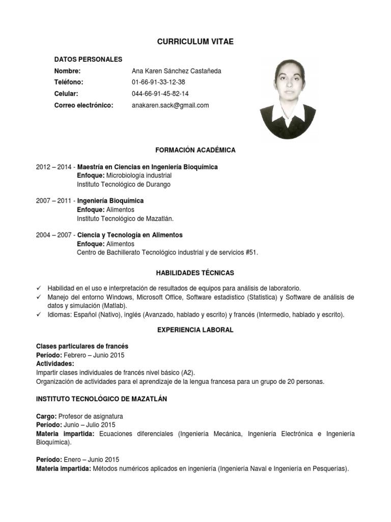 Excepcional Ingeniero Curriculum Vitae Formato Doc Imagen - Ejemplo ...