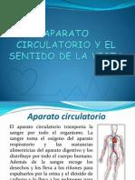 Aparato Circulatorio y Sentido de La Vista